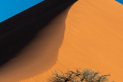 Sand dune, Namib-Naukluft National Park, Sesriem, Namibia