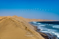 Sand dunes, Sandwich Harbor, Namib-Naukluft National Park, Walvis Bay, Namibia