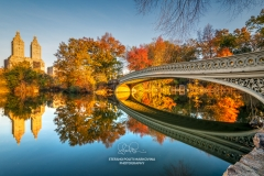 Fall foliage, Bow Bridge, Central Park, New York, USA