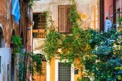 Trastevere district, Rome, Lazio