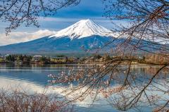 Lake Kawaguchi with the iconic Mount Fuji, Fujikawaguchiko, Honshu, Japan