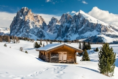 Scenic winter view of Seiser Alm or Alpe di Siusi with Sassolungo or Langkofel massif in the background, Dolomites, Alto Adige - South Tyrol, Italy